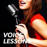 portfolio_block_voice2