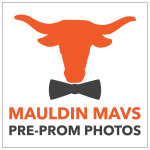 portfolio_mavsprom